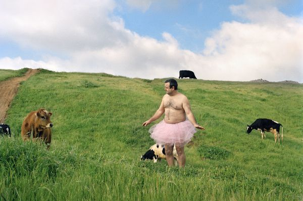 A man, dressed only in a pink tutu, stands in a green pasture alongside a handful of dairy cows.