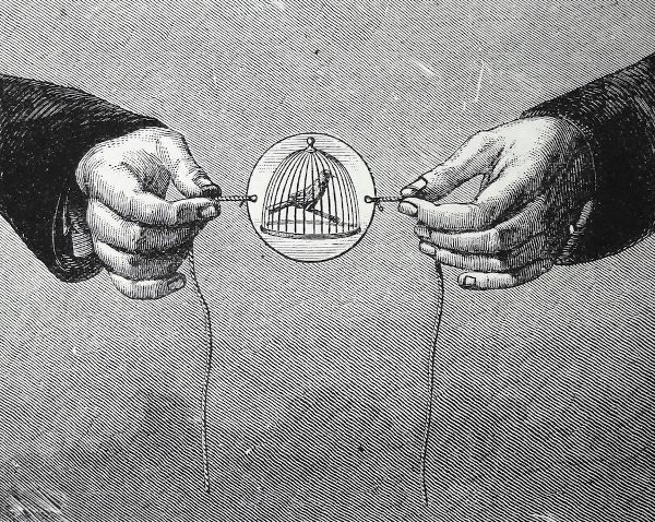 A pencil drawing of two hands holding the string attached tot he thaumatrop. Depicted on the device is a caged bird.
